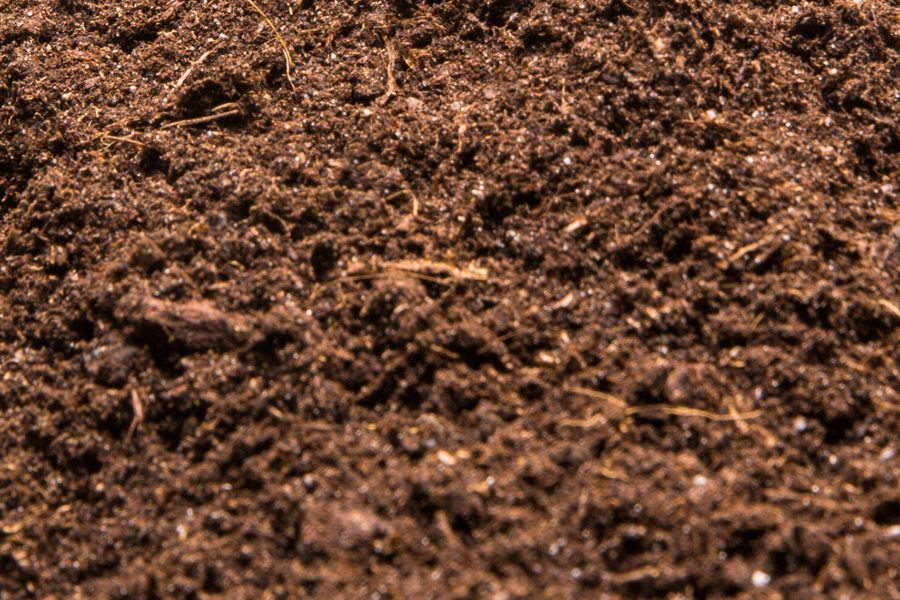 Heap of the soil isolated
