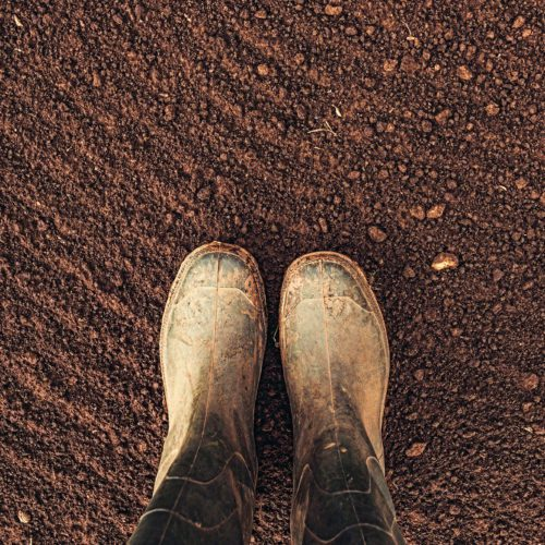 Top view of farmer rubber boots standing on ploughed arable land with copy space