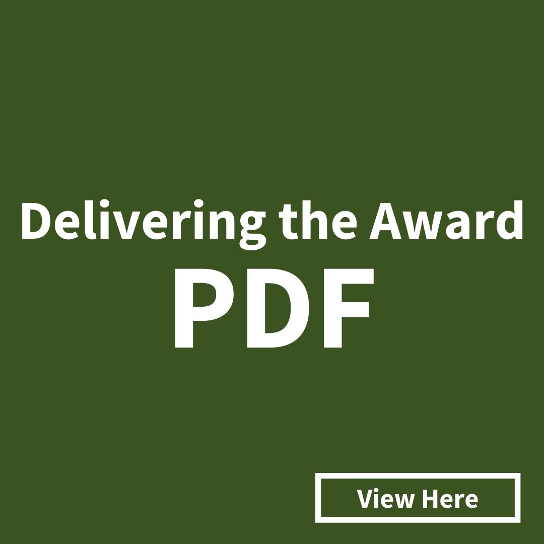 Click here to view and download the Delivering the Award PDF